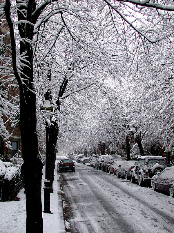 My Street in Winter, where i live (Boston, MA).