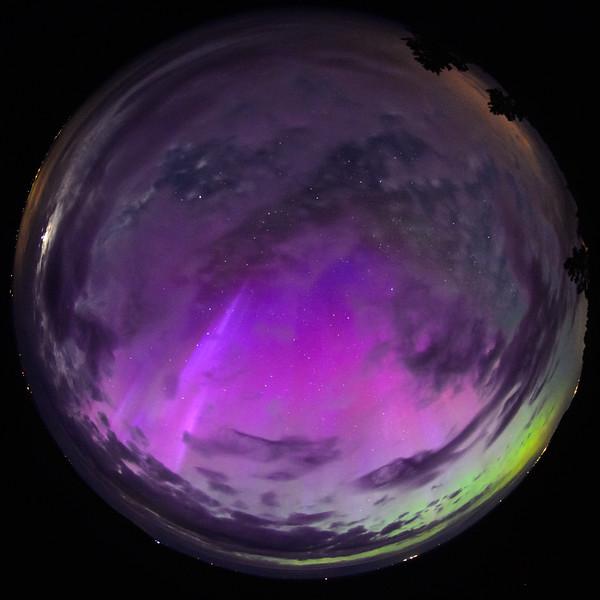 Allsky Aurora