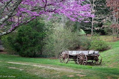 Wagon at Johnson Grist Mill
