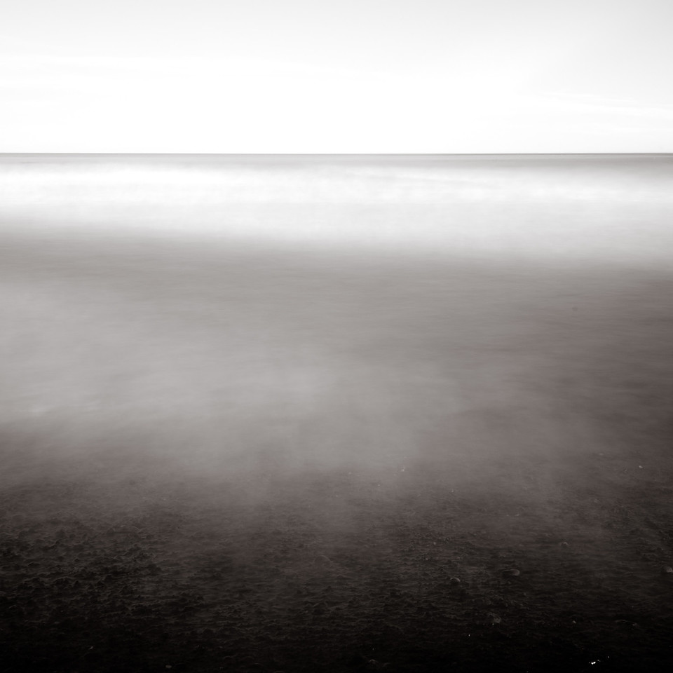 Leithfield Beach Study