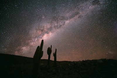 Spent two days ascending 17,000 ft in the Chilean desert (on the border of Bolivia) to the second highest building in the world, which houses the world's most powerful supercomputer, recently built to make the oldest parts of the cosmos visible for the first time. This is the driest place on the entire planet...the lack of water vapor in the air allows the milky way to be so visible it can cast your shadow. I was grateful for the oxygen mask.  Chajnantor, Chile. November 2011. Photo by Stephane Guisard.