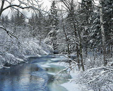 Winter Stream, Holland, Vt