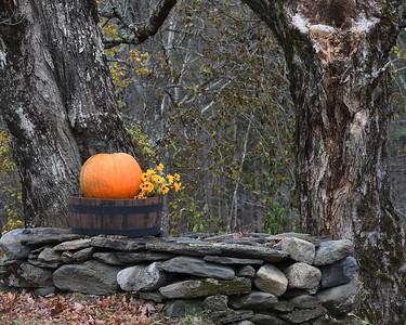 Halloween, Granby, Vt