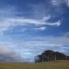 Northumberland Weather 2017a