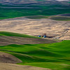 A view of the Palouse region from the Steptoe Butte, near Colfax, Washington.