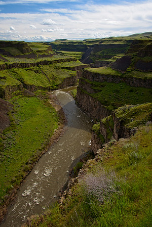 Looking downriver from the Palouse Falls.