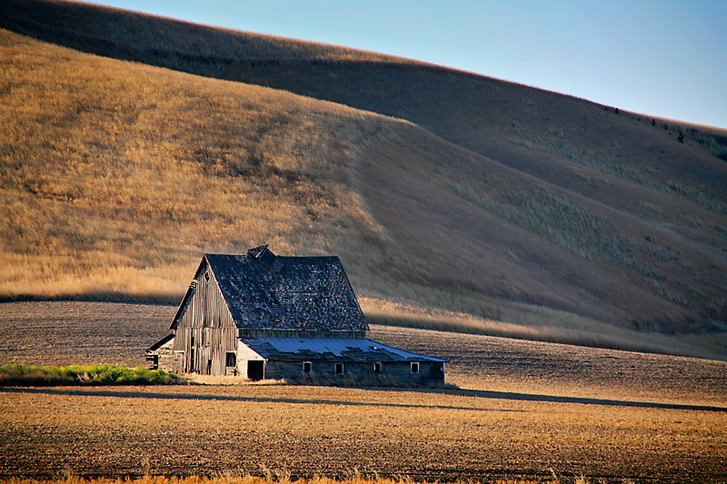 Old Barn, Late Afternoon - Palouse Region, Washington