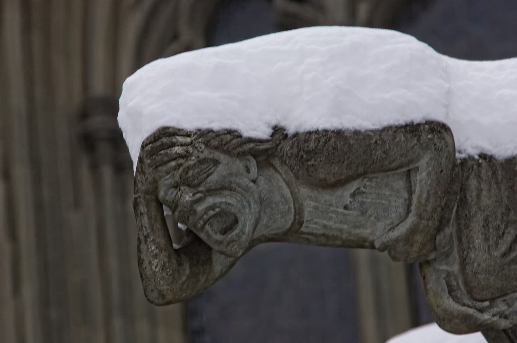 Trondheim Nidaros Cathedral Gargoyle with H1N1