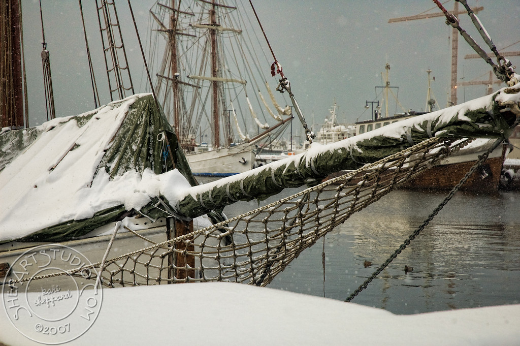 Snow covered rigging, Oslo harbor