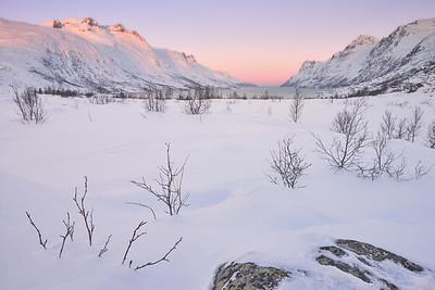 Ersfjordbotn Awakening