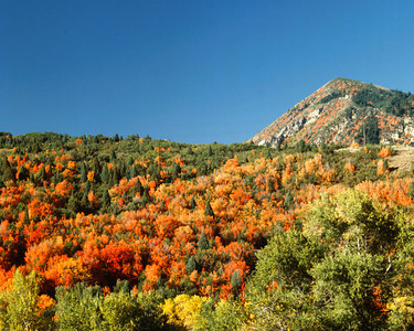 Salmon Colored Hills , Soldier Summit, Utah
