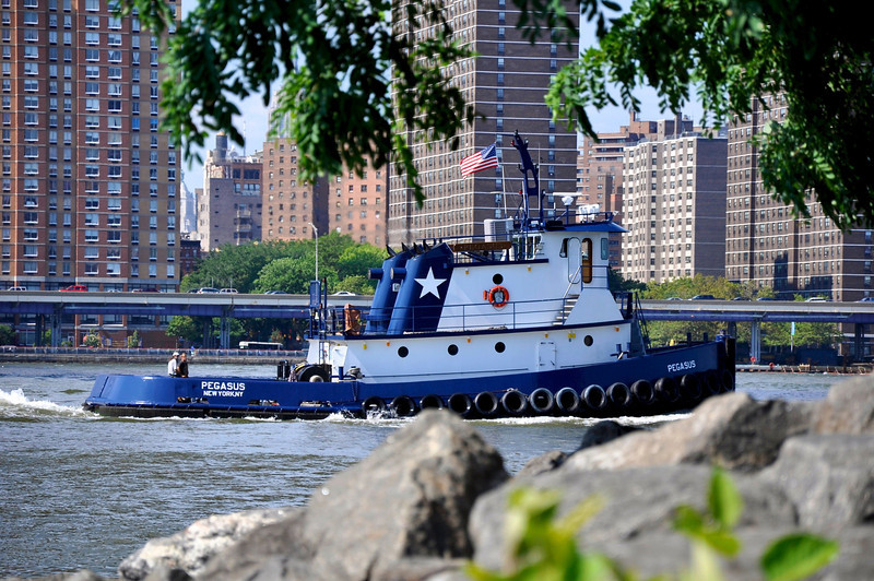 July 14, 2011 Daily Photo. ( Taken 7/10/11)<br /> <br /> Tugboat on The East River.