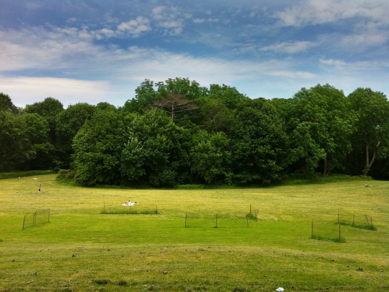 June 5, 2011 Daily Photo.<br /> <br /> An iPhone HDR of Prospect Park, Brooklyn. Taken 6/4/11.