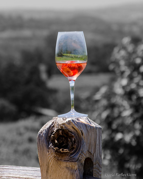 The beauty of a winery's hillside captured in a glass.