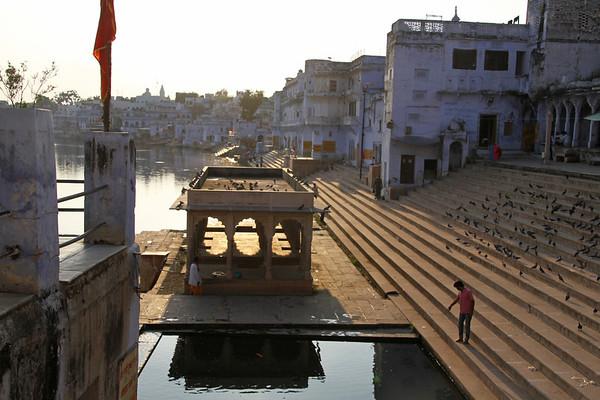 Oct 2013 - Pushkar