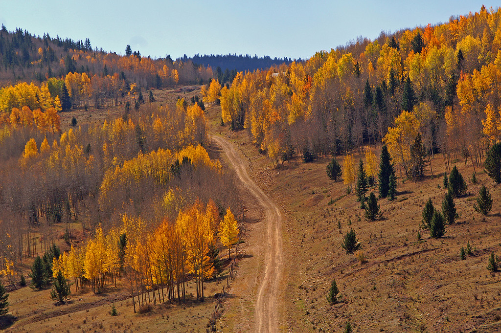 10-20-10: Cripple Creek was alive with color on this Autumn Sunday. There are many jeep trails that traverse the front range of the Rockies. I always enjoy exploring to see where they go.