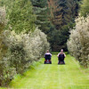 This was at a National Trust property near Cambridge, just saw these 2 people going off into the forest.