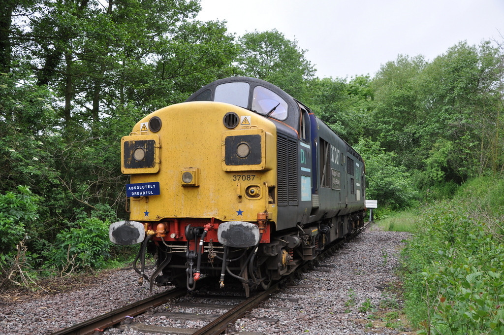 37087, Barrow Hill. 13/06/12.