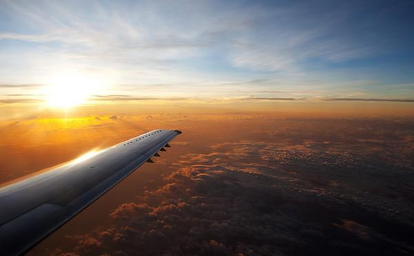 Sunrise on a Wing