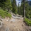 Trail Next to Stewart Canyon