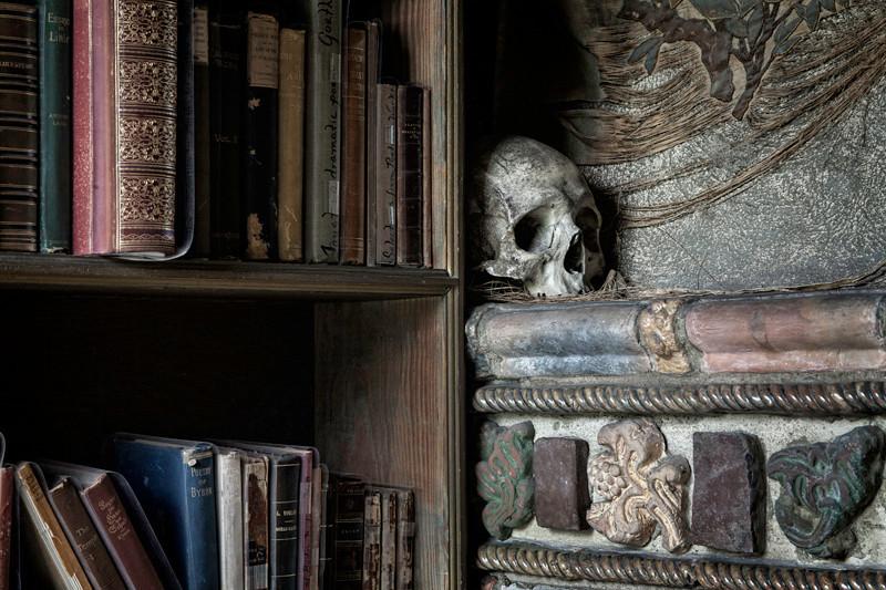 Library Skull