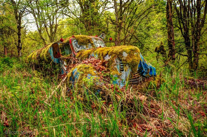 Retired Gas Truck – Duvall, WA