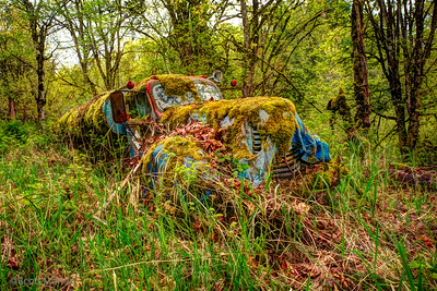 Retired Gas Truck – Duvall, WA