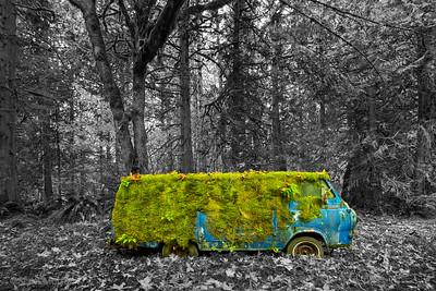 Retire Blue Econoline Van – Carnation, WA