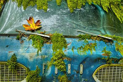 Blue Ford Econoline Van – Duvall, WA