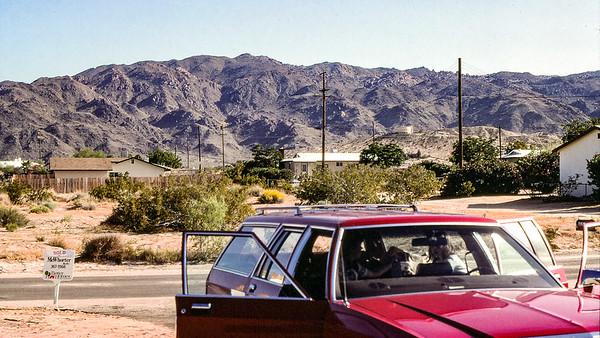 29 Palms, August - 1983