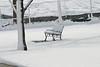 Snowy Bench 0848
