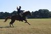 Horseman 3972