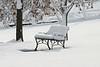 Snowy Bench 0844