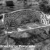 olivet cemetery 01 0212