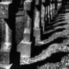 olivet cemetery 21 0212