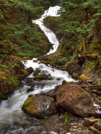 <center><b>Waterfall - Quinault Rain Forest - Olympic National Park</b></center><br><center>One of the many waterfalls along the road on the south shore of Lake Quinault.</center>