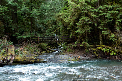 Bridge to Marymere Falls
