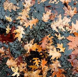 The sky is falling - Nov 12