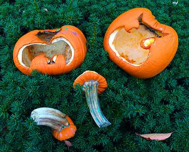 Halloween plus 5 - Nov 5