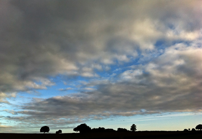 31 August 2011<br /> Moring sky, with trees that look like a galloping horse...
