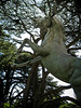 23 August 2011<br /> Horse sulpture.