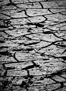 2 September 2011 Dried up lake bed.  Stark black and white.
