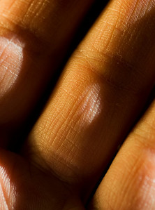 "Week 4: ""Texture In Hand.""  Shot with a Tamron 90mm f/2.8 macro lens mounted to a Nikon D700. Sidelit (from the right) by the afternoon sun. Sidelit (from the left) by a 12-inch gold reflector.  This was my ""photo of the day"" for April 5, 2009."