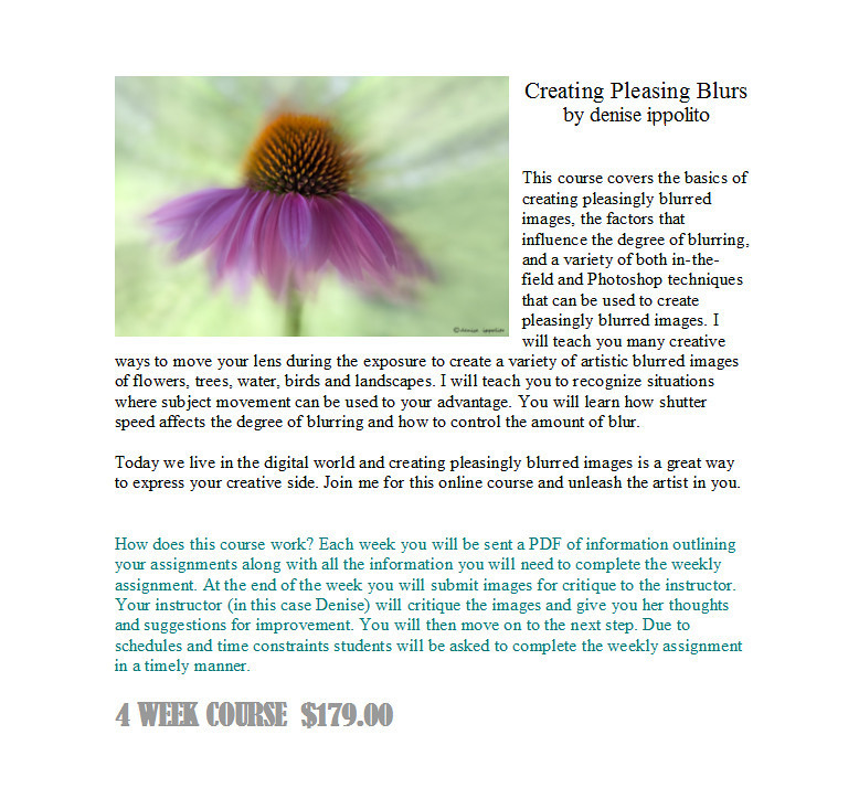 "<p align=""justify"">Creating Pleasing Blurs by denise ippolito</p>  <p align=""justify"">This course covers the basics of creating pleasingly blurred images, the factors that influence the degree of blurring and a variety of both in-the-field and Photoshop techniques  that can be used to create pleasingly blurred images. I will teach you many creative ways to move your lens during the exposure to create a variety of artistic blurred images of flowers, trees, water, birds and landscapes. I will teach you to recognize situations where subject movement can be used to your advantage. You will learn how shutter speed affects the degree of blurring and how to control the amount of blur. </p>  <p align=""justify"">Today we live in the digital world and creating pleasingly blurred images is a great way to express your creative side. Join me for this online course and unleash the artist in you.</p>  <p align=""justify"">How does this course work? Each week you will be sent a PDF of information outlining your assignments along with all the information you will need to complete the weekly assignment. At the end of the week you will submit images for critique to the instructor. Your instructor (in this case Denise) will critique the images and give you her thoughts and suggestions for improvement. You will then move on to the next step. Due to schedules and time constraints students will be asked to complete the weekly assignment in a timely manner. 4 WEEK COURSE  $179.00 What This Course Covers:</p>   <p align=""justify"">Week 1: What key elements are needed to create pleasing blurs. In this week we will cover the fundamentals of blurs. We will go over aperture, shutter speed, lighting conditions and tripod use. We will also go over what you should look for in the field and what conditions are best for blurred images. An outline of equipment that can be helpful but not necessarily needed. We will get started creating just the right amount of blur. Learning to control the amount of blur will be paramount.</p>       <p align=""justify""> Week 2: Getting started.       For this week we will cover camera movement and start to get more        creative with our images. Lots of different camera movements to        go over and try. It should be a fun week!       We will cover tips and tricks for capturing flocks of birds        as well as groups of flowers. Camera settings, lighting and composition will        all be  covered this week  also.</p>       <p align=""justify"">  Week 3:Movement:        Zoom Blurs, Panning Blurs and Motion Blurs will be our focus for this week.       There are lots of different motion blurs including water and        wind blurs. We will be covering all of the above during this week..</p>        <p align=""justify"">Week 4: Fine tuning Your Blurs.       This week we will cover processing your blurs with the help of        Photoshop. Cropping and sharpening as well as noise reduction. Adding more       drama to your blurs in Photoshop. How to create a zoom blur in Photoshop.       Detailed critiquing of your images from the week. </p>   <p align=""justify"">Recommended Gear: •	A digital DSLR camera •	Zoom lens (you can still take this course with out one) •	Photoshop Elements or CS. (It is not required but it can be helpful in the processing)</p>  <P><strong> <P> <P> To sign up for this course go to http://deniseippolito.com/workshops-2/ and scroll down to the course. <P>"