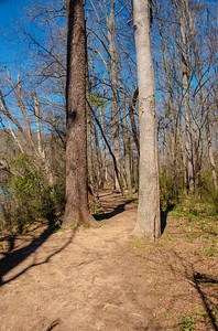 Chattahoochee River Walking Path