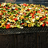 Vegetables Cooking on a Hot Grill