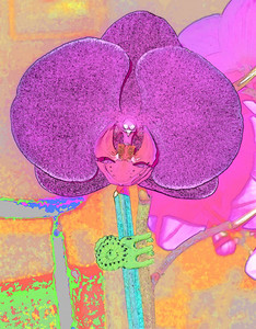 Water color rendition of lovely orchid flower.