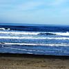 Pacific Coast Near Tillamook Oregon 2