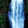 Multnomah Falls in Columbia River Gorge in Oregon 2