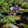 Japanese Garden in Washington Park in Portland Oregon